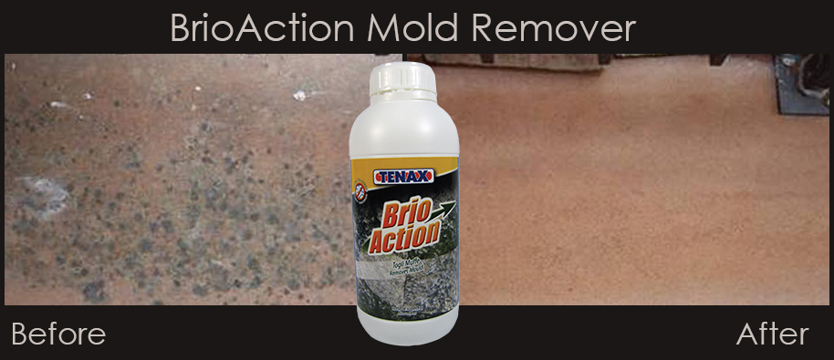 BrioAction Mold Remover Before and After